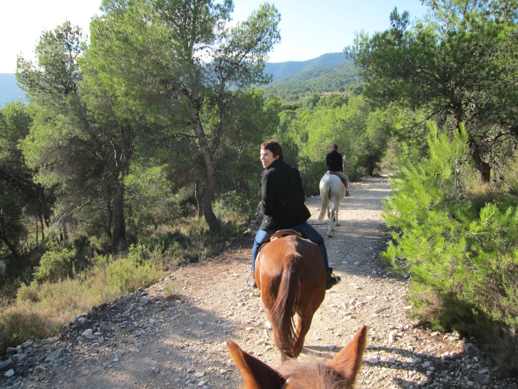 Paseo a caballo en Tibi